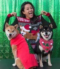ugly christmas sweater paw ty sun dec 11 hawaii doggie bakery