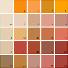 benjamin moore paint colors orange palette 17 house paint colors