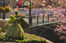 flower and garden festival at orlando theme park toyota of