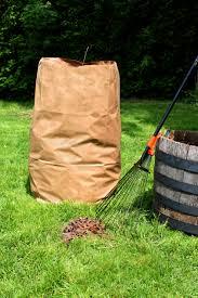 year round yard waste services