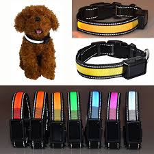 collar light for small dogs china led lighting solar power and usb charing nylon pet cat dog