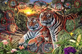 jungle scene image features sixteen tigers confuses