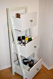 Diy Ladder Bookshelf Diy Ladder Shelf Organizer Houseologie
