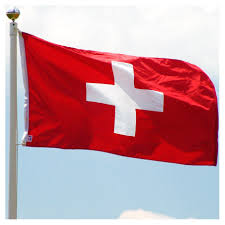 Best Country Flags Switzerland 3ft X 5ft Nylon Flag With Pole Hem Only Banner