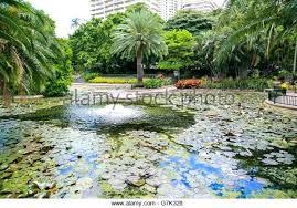 City Botanic Gardens Brisbane City Botanic Gardens Kiepkiep Club
