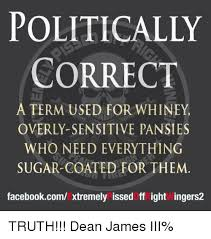 Politically Correct Meme - politically correct term used for whiney who need everything sugar