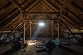 get rid of roof rats terminix