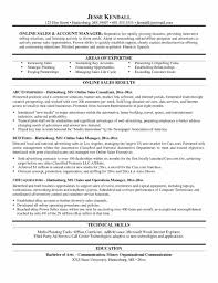 Best Resume Format Accounts Manager by Planning Template Action Plan Free Best Business Action Account