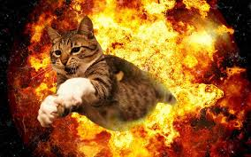 Explosion Meme - 20 cats walking away from explosions as a parody to cool guys don t