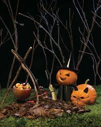 cat in the hat pumpkin decoration mini witch and cat pumpkins martha stewart