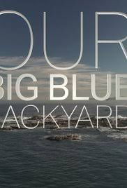 Our Big Backyard by Our Big Blue Backyard Tv Series 2014 U2013 Imdb