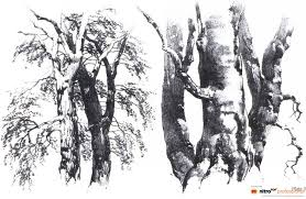 super heroes black and white sketches drawing trees and nature