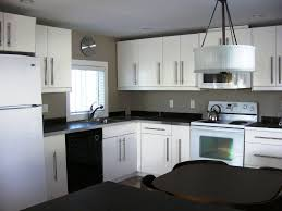 Ikea Kitchen Cabinet Styles Paint Colors That Look Good With Dark Kitchen Cabinets