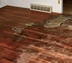 How Do You Polyurethane Hardwood Floors - 11 wood flooring problems and their solutions fine homebuilding
