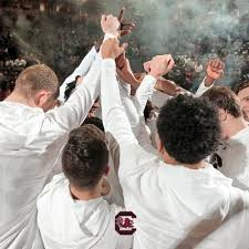 154 Best Gamecocks Images On Gamecock Mbb Gamecockmbb