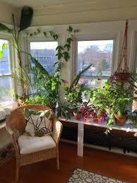 ideas redoubtable indoor garden design ideas sipfon home deco