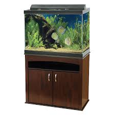 black friday 2017 petsmart aqueon 65 gallon aquarium ensemble fish aquariums petsmart