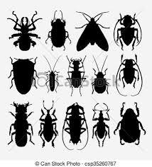 was ist das für ein insekt eine wanze oder was urlaub insekten wanze silhouette insekt elemente use spinnentier clipart