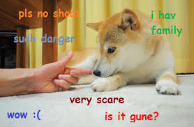 Doge Know Your Meme - such danger doge know your meme