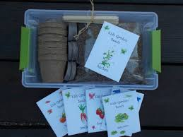 well wreapped grow your own sunflower kit indoor flower garden