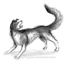 collie tf 3 by ageaus werewolf 000 pinterest collie