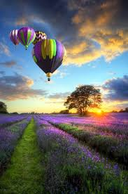 155 best the world is a rainbow of colors images on pinterest