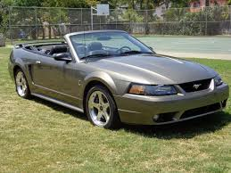mustang cobra accessories 2001 ford mustang accessories car autos gallery