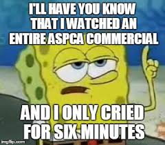Aspca Meme - ill have you know spongebob meme imgflip