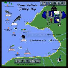 vallarta fishing places to go fishing