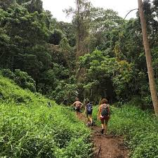 Hawaii nature activities images 84 best best hikes activities tourist sights in hawaii images jpg