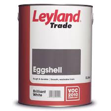 eggshell paint l nwtt