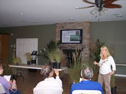 maryland extension educator speaks about ornamental grasses cape