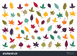 fall leaves silhouettes autumn color palette stock vector