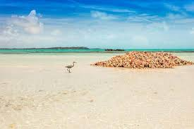 turks and caicos islands location people u0026 history
