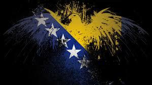 Flag Of Bosnia Bosna Book Your Trip To This Country Via Www Nemoholiday Com