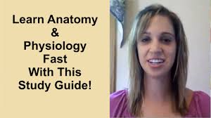 Learning Anatomy And Physiology Free Online How To Study Anatomy And Physiology And Get Good Grades Youtube