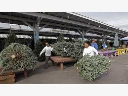 silver volunteer firefighters sell trees asbury