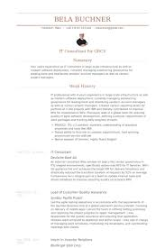 Consulting Resume Examples by It Consultant Resume Samples Visualcv Resume Samples Database