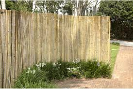 reed fencing l backyard xscapes reed fence good cane reed