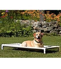 Floating Dog Bed Outdoor Dog Beds Waterproof Dog Beds Dog Com