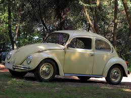 volkswagen beetle 1930 a stray branch of volkswagen evolution found in brazil dyler