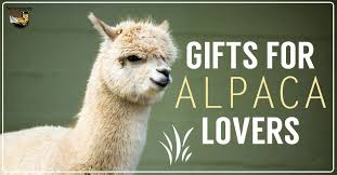cute u0026 unique present ideas and gifts for alpaca lovers