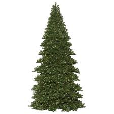 search 20 foot tree christmastopia