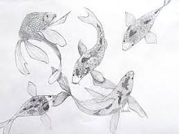 fish sketch drawings page 5 of 6 fine art america