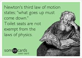 Toilet Seat Down Meme - newton s third law of motion states what goes up must come down