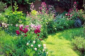 garden design garden design with spring flower bulb time line