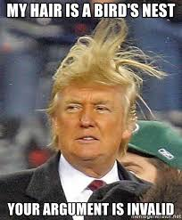 Meme Your Argument Is Invalid - my hair is a bird s nest your argument is invalid donald trump