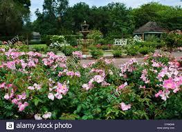 fountain at the harry p leu botanical gardens in orlando florida