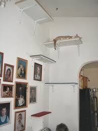 Wall Shelves For Cats 13 Best Cat Furniture Images On Pinterest Cat Stuff Cat Wall