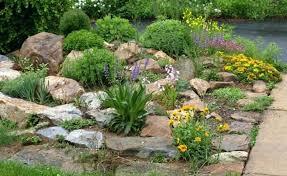 Desert Rock Garden Ideas Desert Rock Garden Ideas Desert Rock Garden Ideas Garden Design